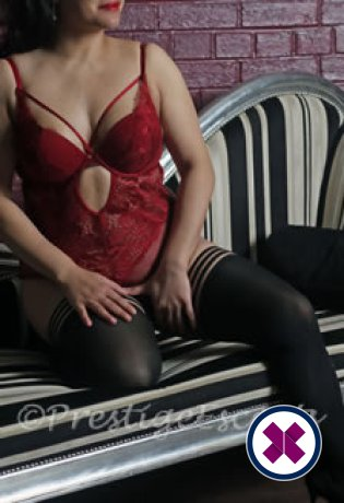Sasha is a top quality English Escort in Newcastle
