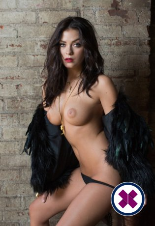 Charlotte is a high class Italian Escort Amsterdam