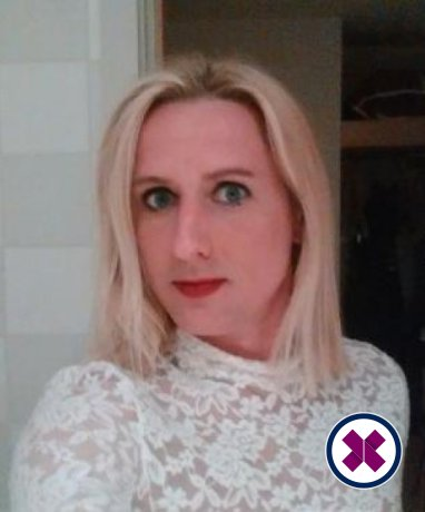 Meet the beautiful Katie Fox TS in Derby  with just one phone call