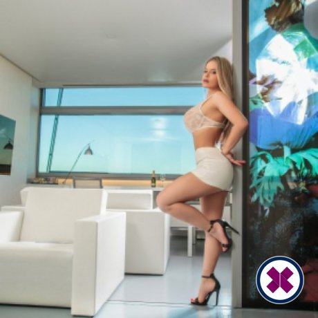 Karina is a hot and horny Romanian Escort from Virtual