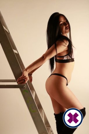 Monica is a hot and horny English Escort from Merton