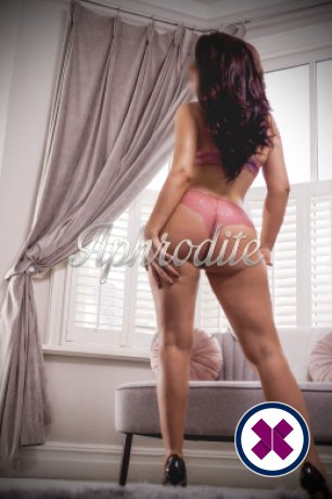 Harley is a sexy British Escort in Cardiff