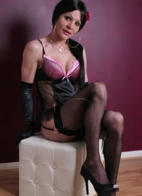 TS Camila  - escort in London