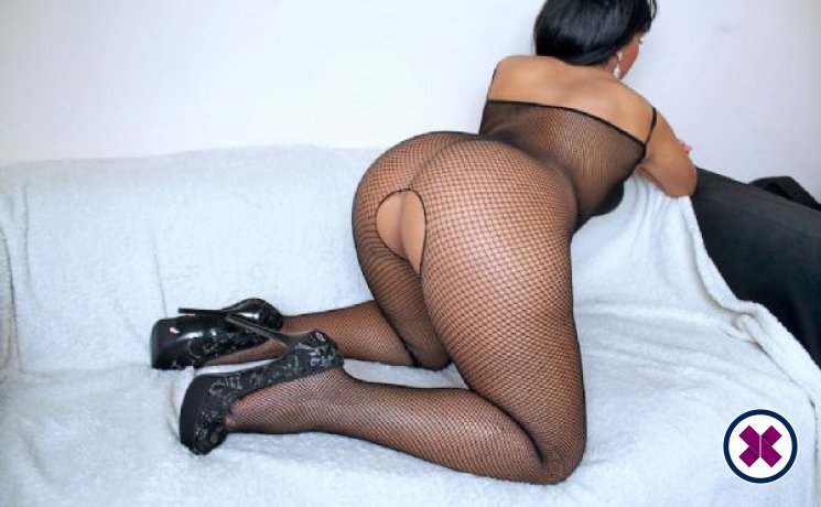 Layla is a sexy English Escort in Bristol