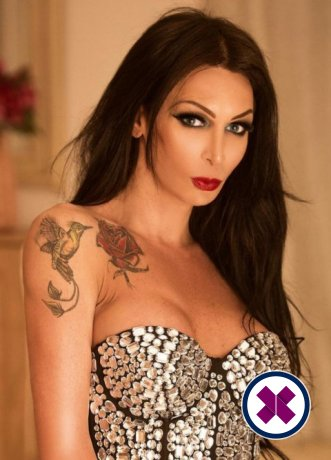 Amanda TS ist eine sexy Brazilian Escort in Birmingham